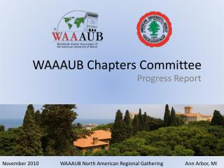 WAAAUB Chapters Committee