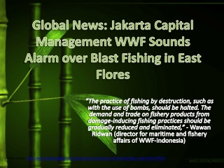 Global News: Jakarta Capital Management WWF Sounds Alarm