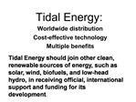 Tidal Energy: