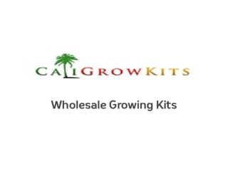 Caligrowkits - Mushroom Growing Kits