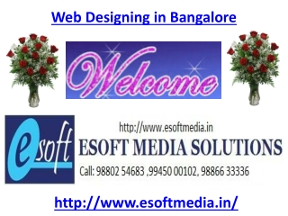 Web Designing in Bangalore