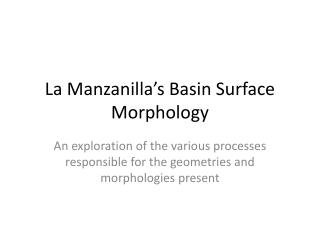 La Manzanilla s Basin Surface Morphology