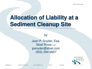 Allocation of Liability at a Sediment Cleanup Site