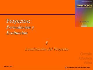 Proyectos: Formulaci n y Evaluaci n