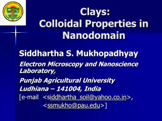 Clays: Colloidal Properties in Nanodomain