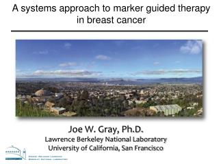 A systems approach to marker guided therapy in breast cancer