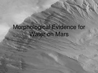 Morphological Evidence for Water on Mars