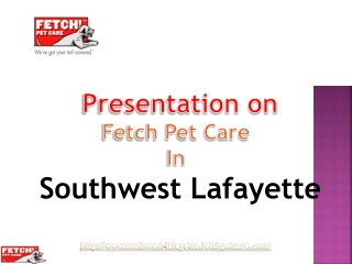 Fetch Pet Care- The Pet Lovers