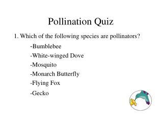 Pollination Quiz