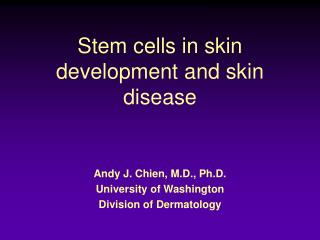 Stem cells in skin development and skin disease
