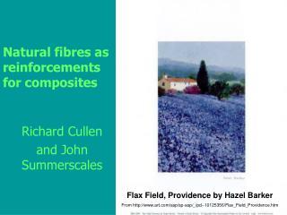 Natural fibres as reinforcements for composites