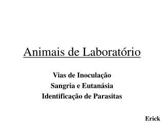 Animais de Laborat rio