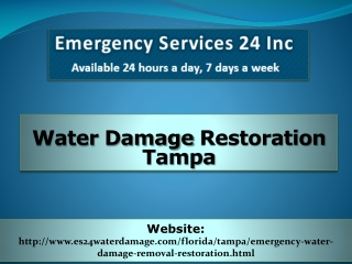Water Damage Restoration Tampa