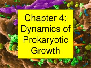 Chapter 4: Dynamics of Prokaryotic Growth