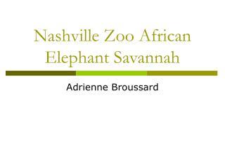 Nashville Zoo African Elephant Savannah
