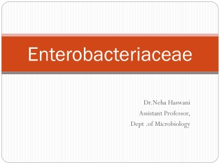 II. Enterobacteriaceae