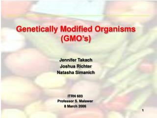 Genetically Modified Organisms GMO s