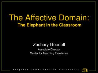The Affective Domain: The Elephant in the Classroom