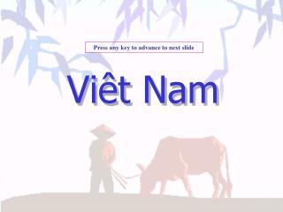 Vi t Nam