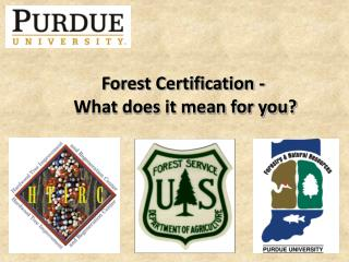 Forest Certification -  What does it mean for you