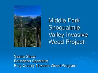 Middle Fork Snoqualmie Valley Invasive Weed Project