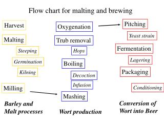 Flow chart for malting and brewing