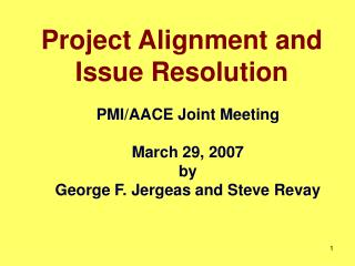 Project Alignment and Issue Resolution