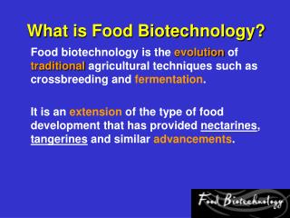 What is Food Biotechnology