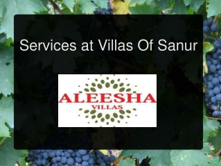 Services at villas of sanur
