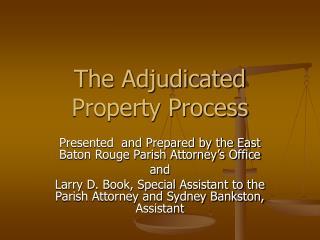 The Adjudicated Property Process