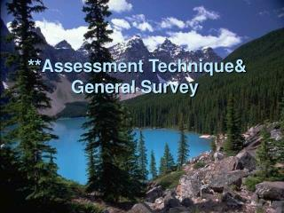 Assessment Technique General Survey