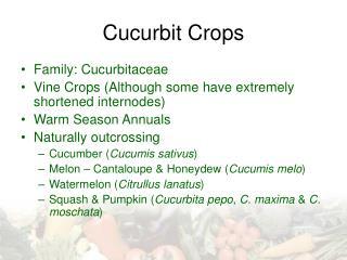 Cucurbit Crops