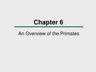 An Overview of the Primates