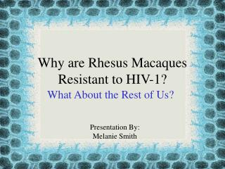 Why are Rhesus Macaques Resistant to HIV-1