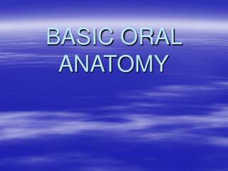 BASIC ORAL ANATOMY