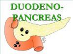 DUODENO-PANCREAS