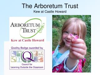 The Arboretum Trust Kew at Castle Howard