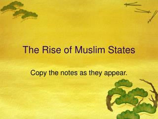 The Rise of Muslim States