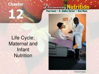 life cycle: maternal and infant nutrition
