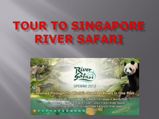Go For Singapore River Cruise on This Weekend