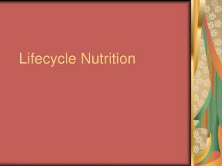 lifecycle nutrition
