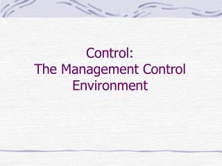 Control:  The Management Control Environment