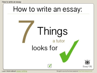 Essay writing - 7 things a tutor will look for