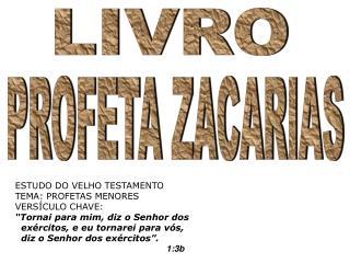 Profeta Zacarias - Jesus no livro