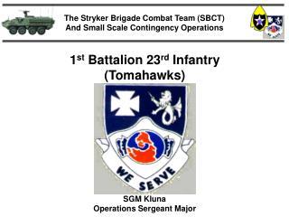 1st Battalion 23rd Infantry Tomahawks