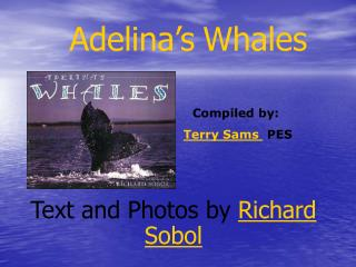 Adelina s Whales