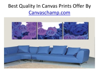 Best Quality Prints Offer By CanvasChamp