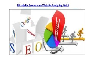 Affordable Ecommerce Website Designing Delhi