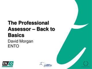 The Professional Assessor   Back to Basics