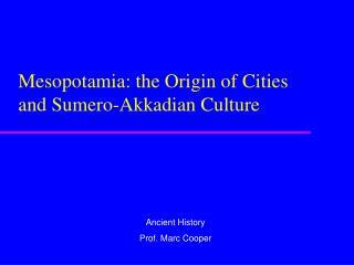 Mesopotamia: the Origin of Cities and Sumero-Akkadian Culture